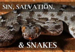 Sin_Salvation_Snakes